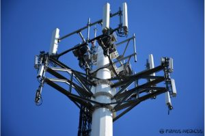5G ir daiktų internetas: mokslinė pavojaus žmonių sveikatai apžvalga