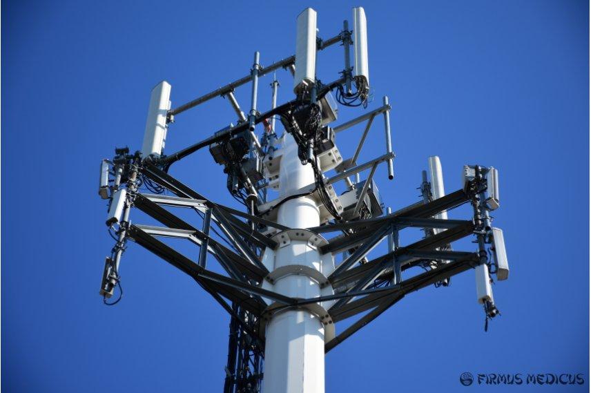 5G ir daiktų interneto žalos mokslinė apžvalga